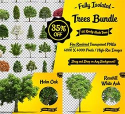 59张高清透明的树木图片:Fully Isolated Trees Bundle - 60 pcs