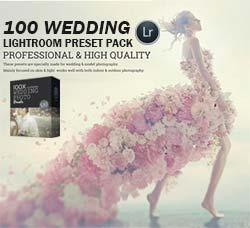 Lightroom预设-100个婚纱照片专用色调:100 Wedding Lightroom Preset Pack