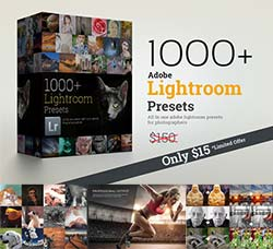 1033个Lightroom色调预设(8套合集):1000+ Lightroom Presets Bundle