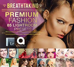 Lightroom预设-85个时尚的肖像色调:85 Fashion & Portrait Lightroom Prese